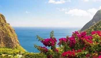 Обзор островов Вест Индии