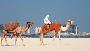10 причин посетить ОАЭ