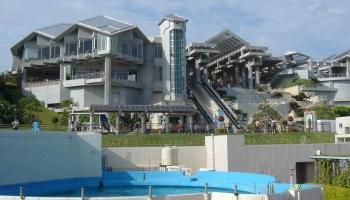 Okinawa Churaumi Aquarium фото