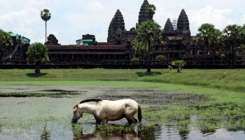 Отзывы о Камбодже