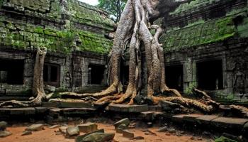 Чем можно заняться в Камбодже